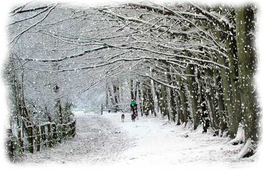 snow-scene-finish11
