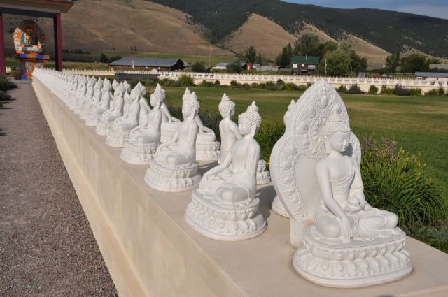 One Thousand Buddhas